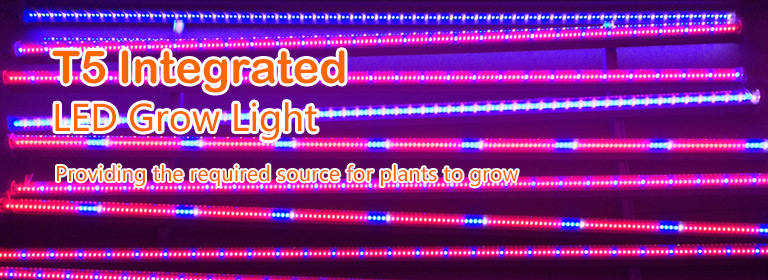 LED T5 Integrated Grow Light