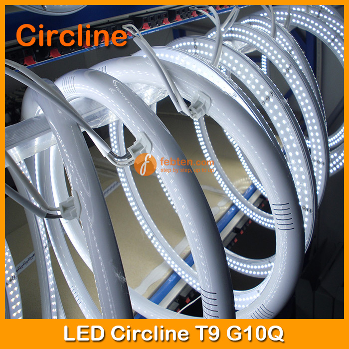 LED Circline Lighting