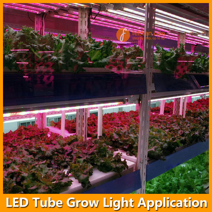 LED Tube Grow Light Application