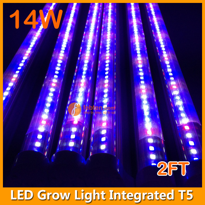 14W 2FT LED Plant Growing Lighting