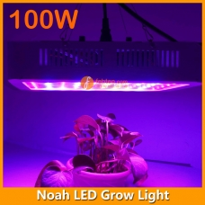 High Power Noah 100W LED Grow Light