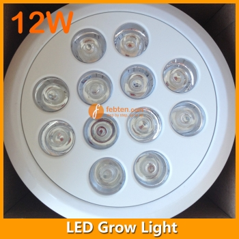 12W E27/E26 Retrofit LED Grow Light