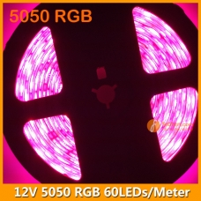 5Meters per Roll 5050 RGB LED Strip Light 12V IP65