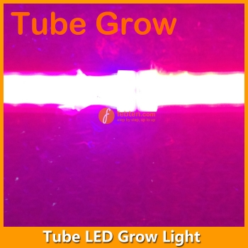 12W LED Grow Lamp Integrated T5 3FT